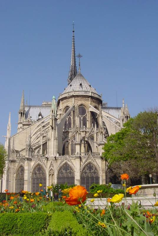 Notre-Dame cathedral, the island of the city and Cluny museum