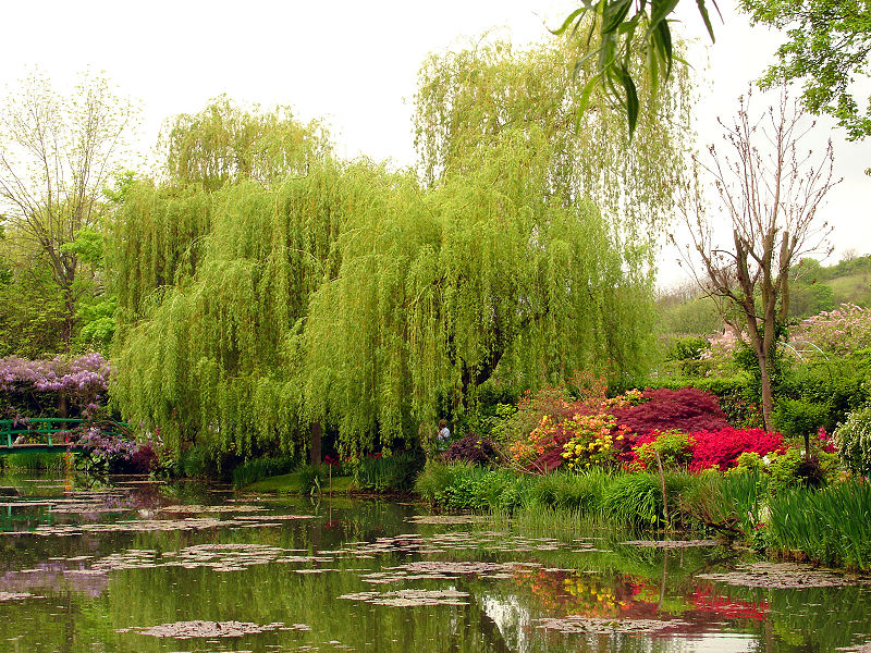 Giverny & Monet s gardens private guided tour