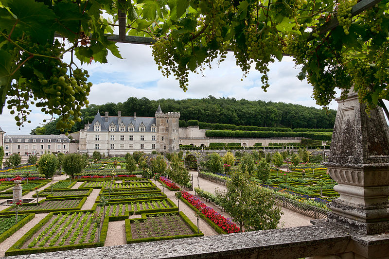 Loire valley private excursion during 2 days